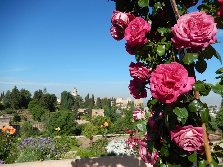 alhambra 10 urlop na etacie