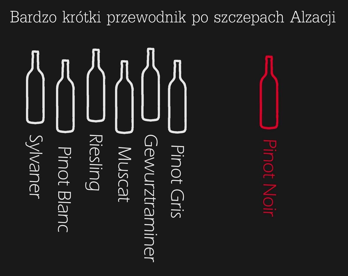 Alzacja wino