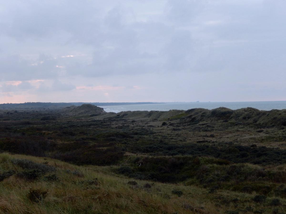 Denmark, Tannisby