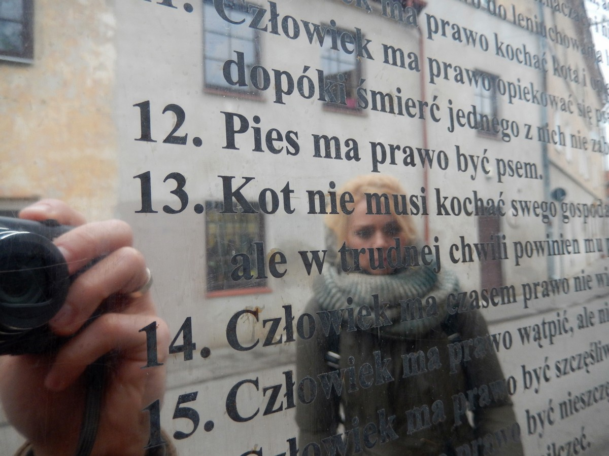 Wilno, Republika Zarzecza