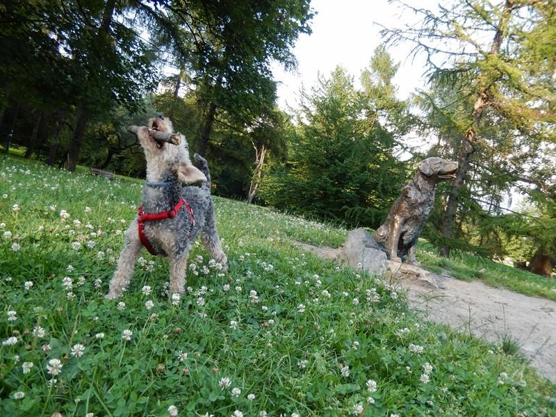 pomnik szczęśliwego psa w warszawie