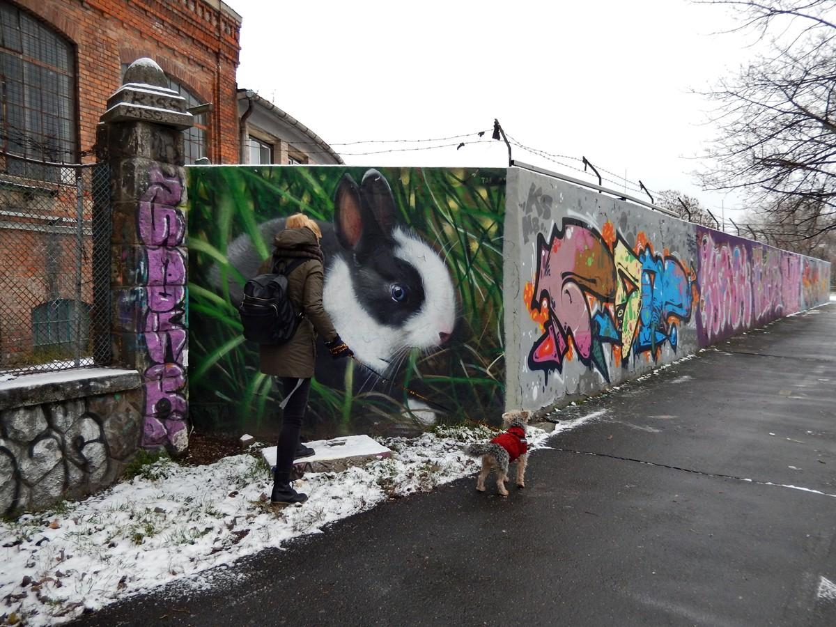 taker street art budapeszt