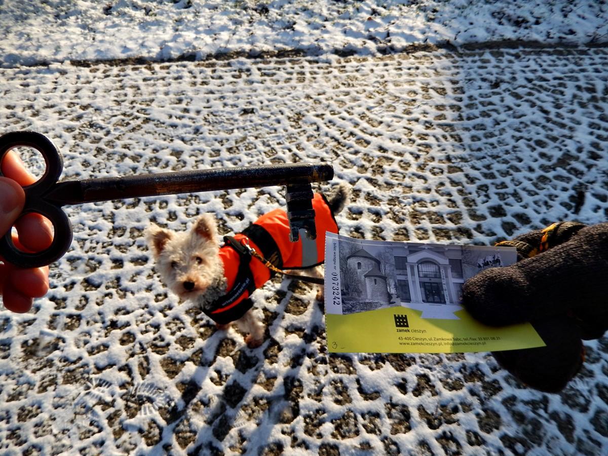 Za 3 PLN i dowód ze zdjęciem dostajemy klucz do rotundy, bilet i psa w pomarańczowym ortalionie