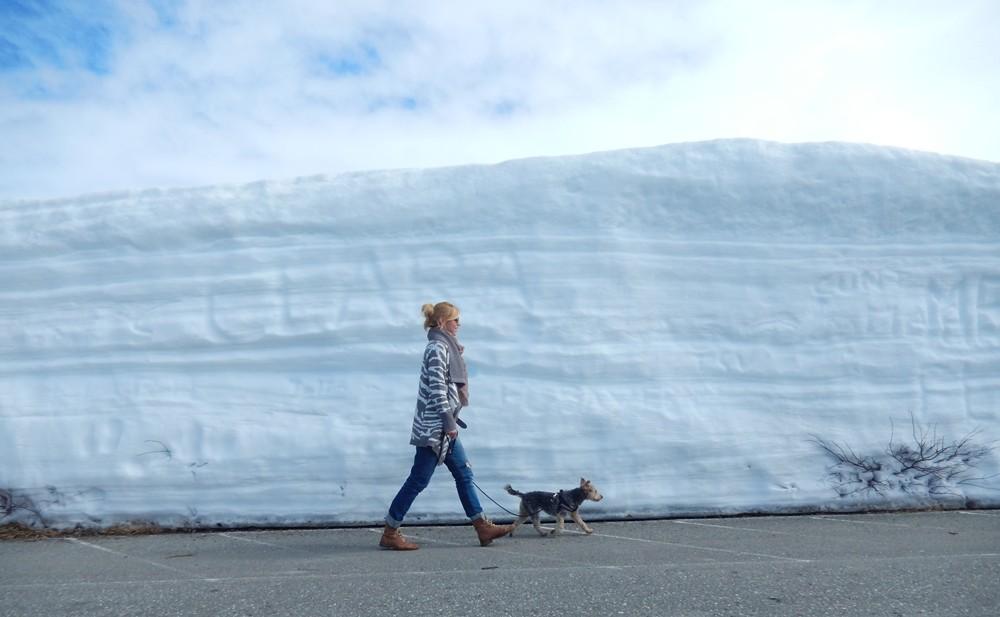 Koło Podbiegunowe, Norwegia