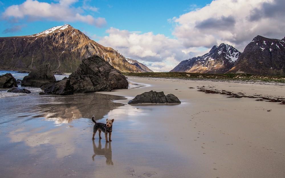 Wyspa Flakstadøya - Lofoty