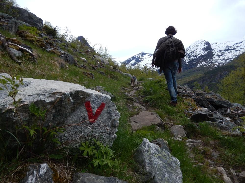 szlak geirangerfjord