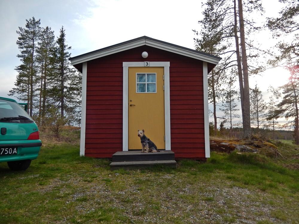 chatka szwecja