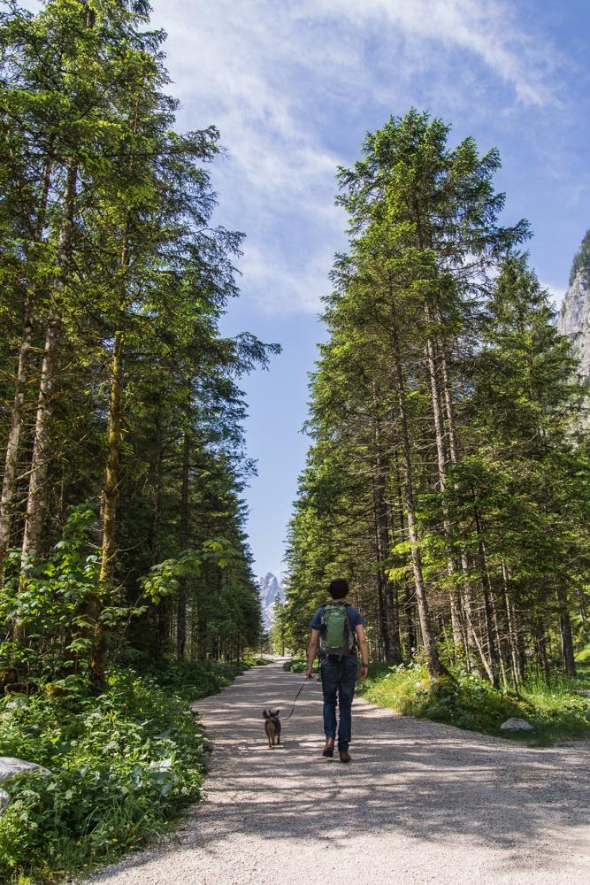 zwiedzanie Berchtesgadenerland