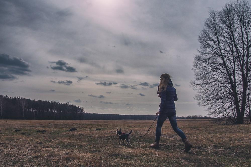 Kampinos z psem