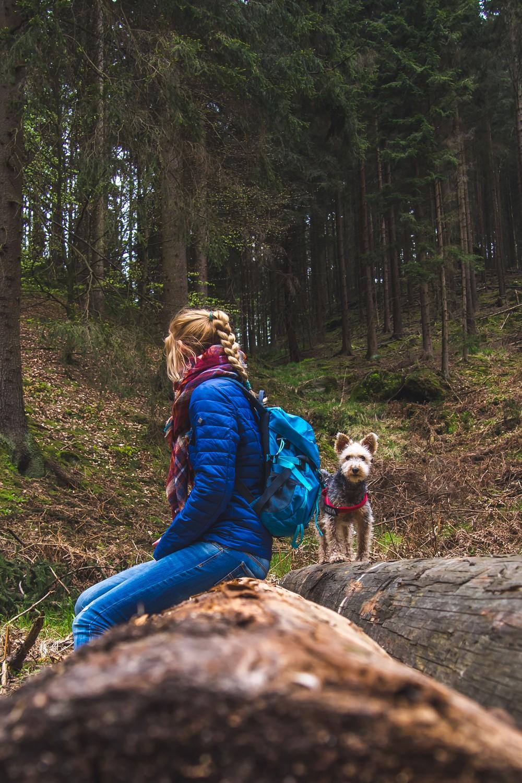 saska Szwajcaria z psem