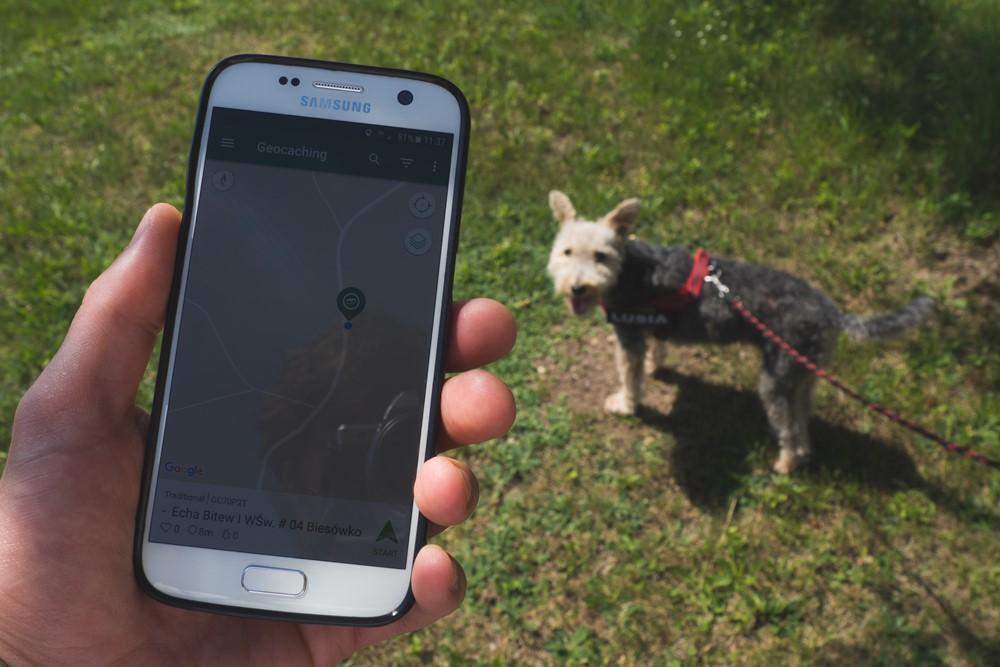 geocaching z psem