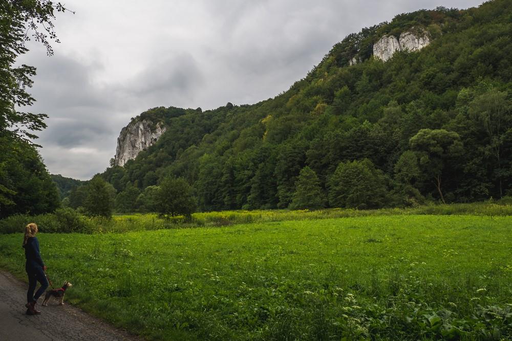 dolina będkowska z psem - jura z psem