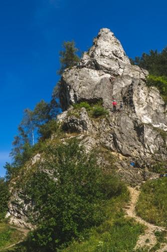 dolina kobylańska z psem - co robić na jurze