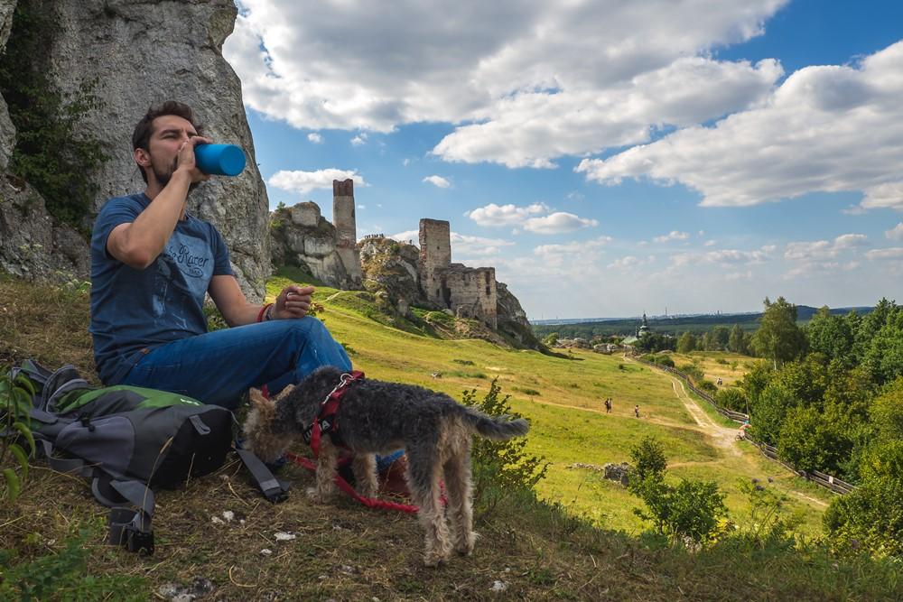 zamek olsztyn z psem - jura z psem