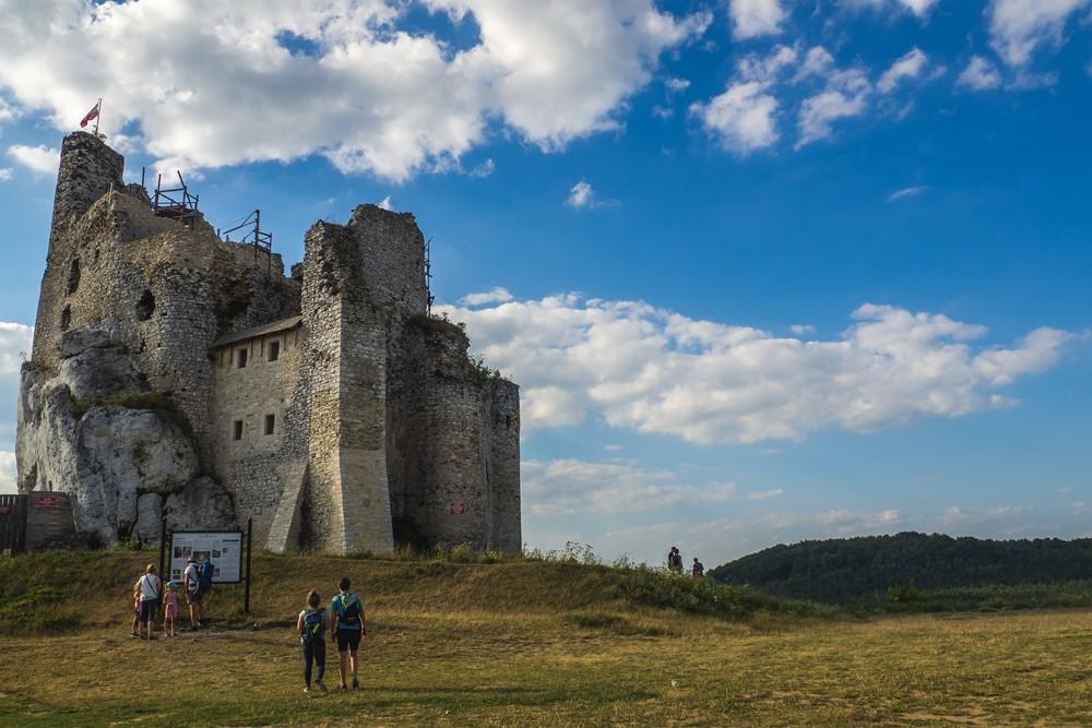 zamek mirów - jura z psem