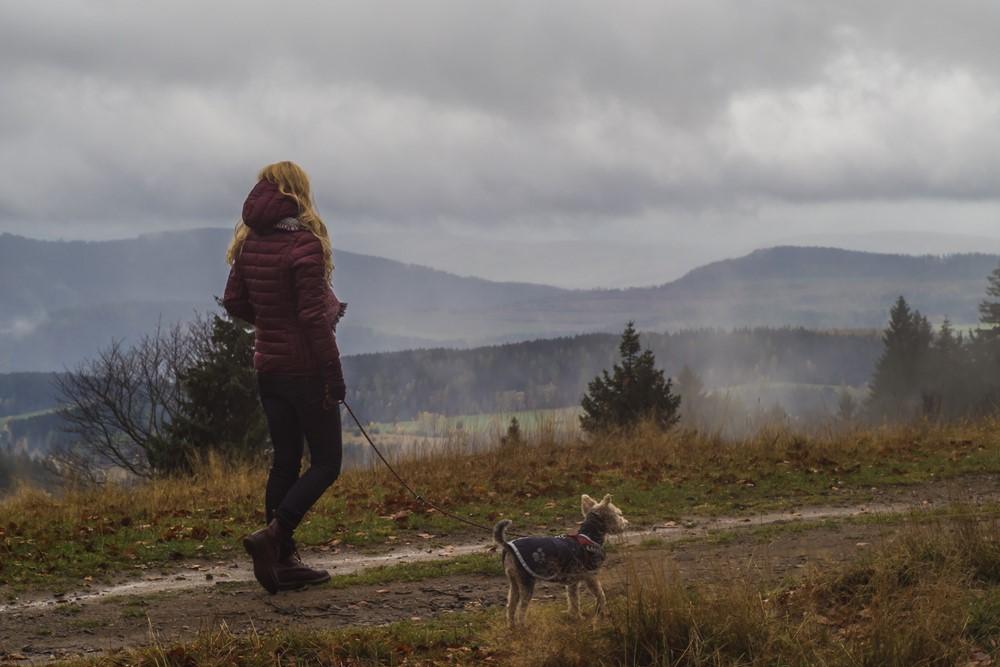góry sowie z psem