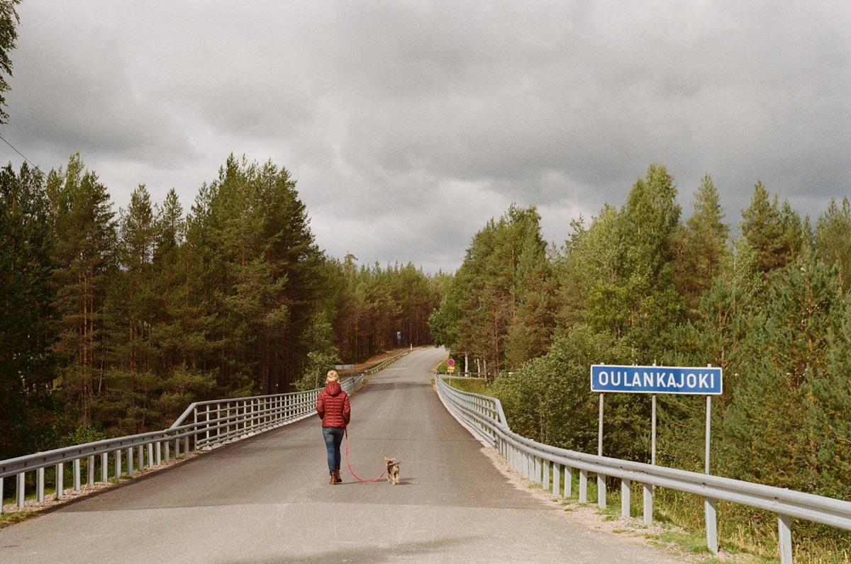 Analogi z Finlandii