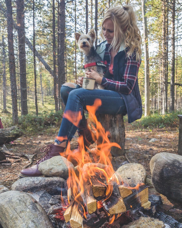 finlandia z psem